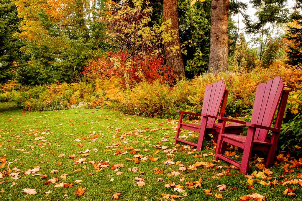 fall lawn ready for winter